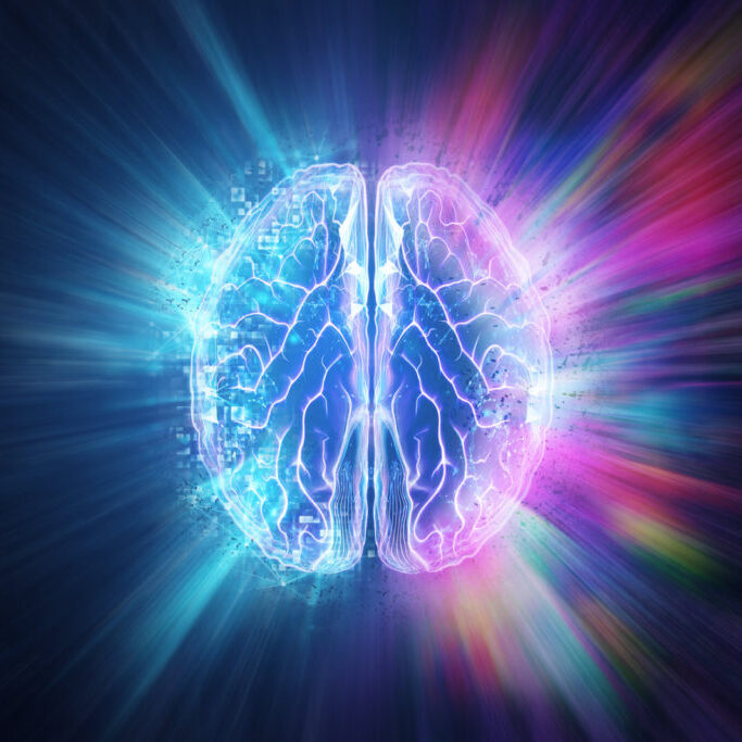 Creative background, the human brain on a blue background, the hemisphere is responsible for logic, and responsible for creativity